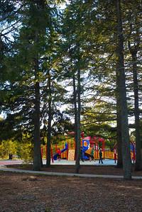 Bowring Park 28