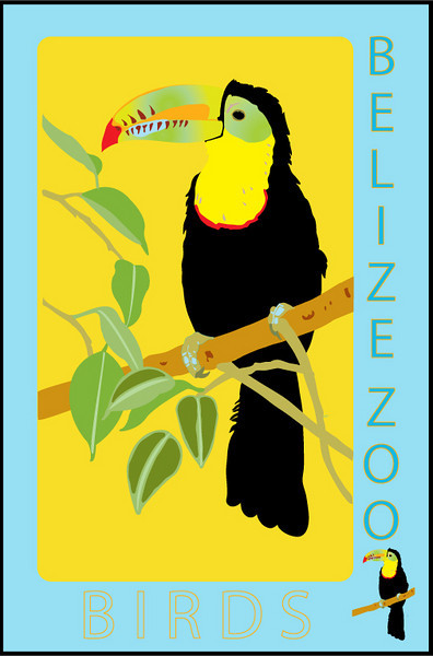 Another assignment for my Visual Communications class in Adobe Illustrator vector illustration. This design is part of a series of posters for the Belize Zoo to promote their exhibits.