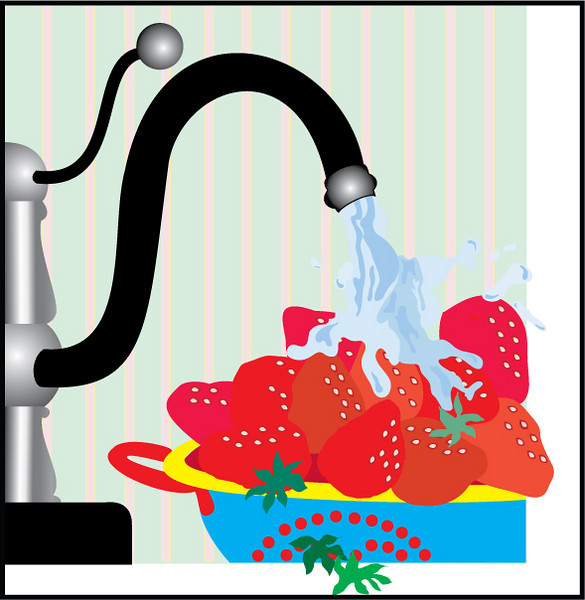 This is one of my first Illustrator drawings from the Visual Communications program at WCC. The assignment was to illustrate a magazine article that didn't have one originally. This illustration depicts the washing of fresh fruit to prevent the spreading of disease.