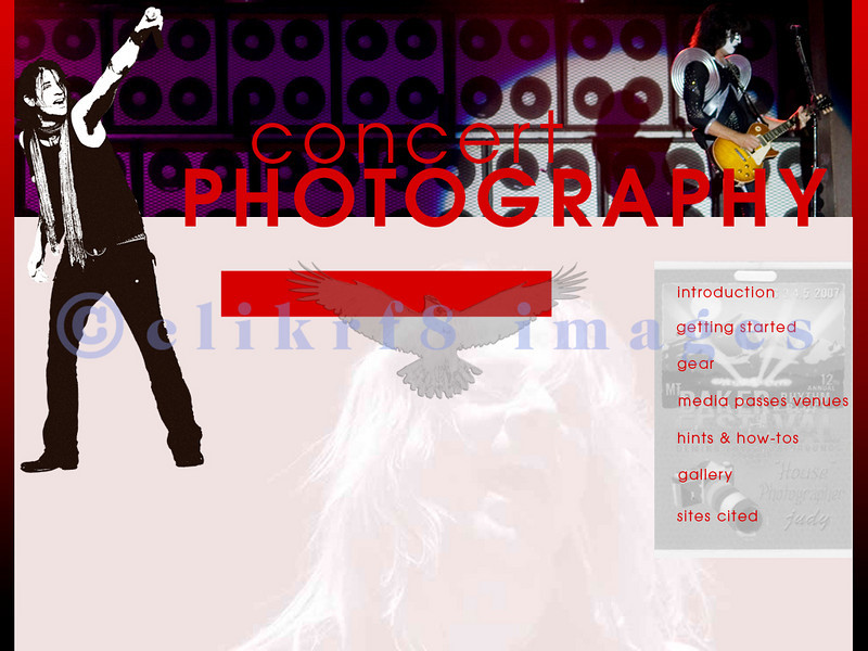 Web design was the most difficult discipline for me to master because of the use of html code which was challenging for me to generate. Even Dreamweaver and CSS didn't make it much easier. This is a composite for a homepage of a website for concert photographers in which the links actually worked between the various pages. The photography is my own as always as I never use stock images when I can generate one myself.
