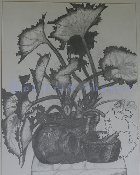 An assignment at a local private art school using various grades of pencil.