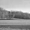 A Fayette County field