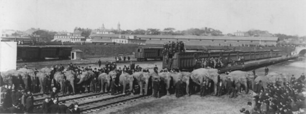Ringling_Brothers_trains
