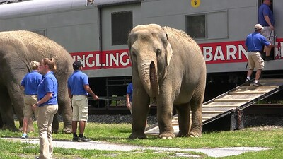 ringling-brothers-circus-train-c