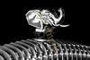 PB2012_Elephant _Mascot_3652