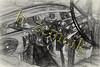 PB 08-13-2015 Thurs-0348 Sketch