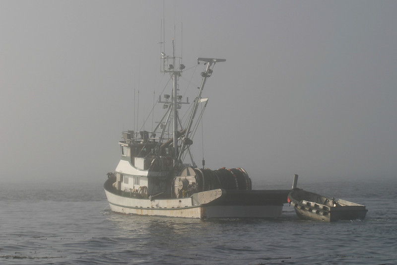 A fishing boat disappearing into the fog in Puget Sound. The mist has shrouded this boat with a little bit of mystery.