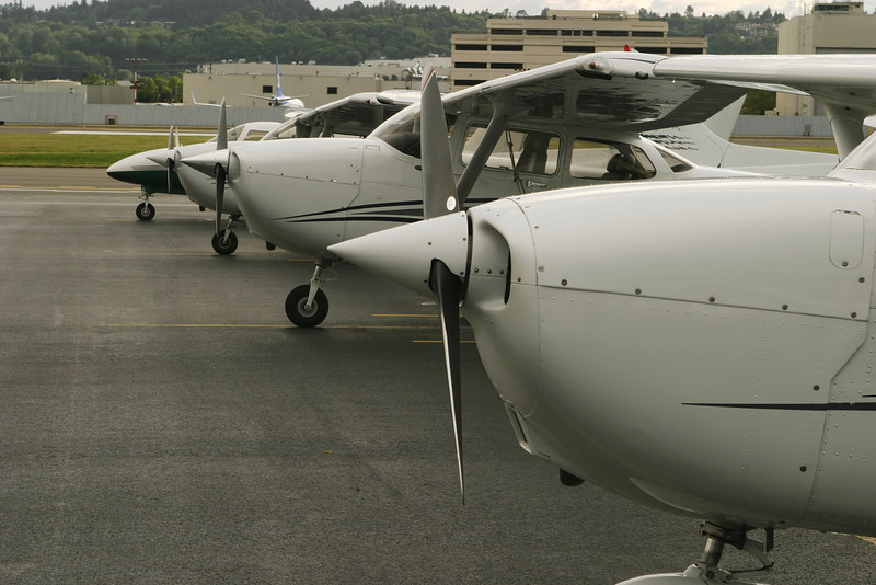 Airplanes are lined up as part of a flight line at a flight school.