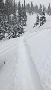 Aspen 2019--135