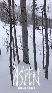 Aspen 2019--127