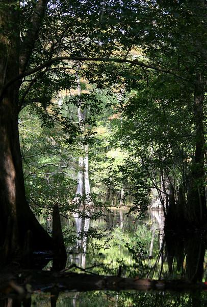 Waccamaw River, Conway SC