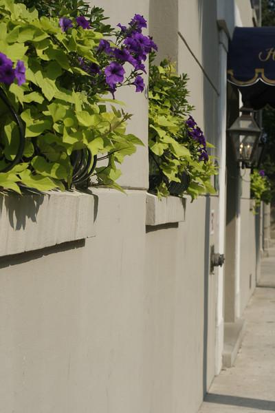 Charleston Spoleto 2011 1 274