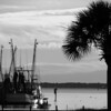 Shrimp Boat in Shem Creek, Charleston, SC