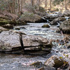 2018-04-20_sessions_woods_0039