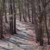 2018-04-20_sessions_woods_0002