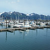 Kenai Fjords Tour - Harbor for the start of the tour