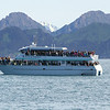 Kenai Fjords Tour - One of the other boats on the water