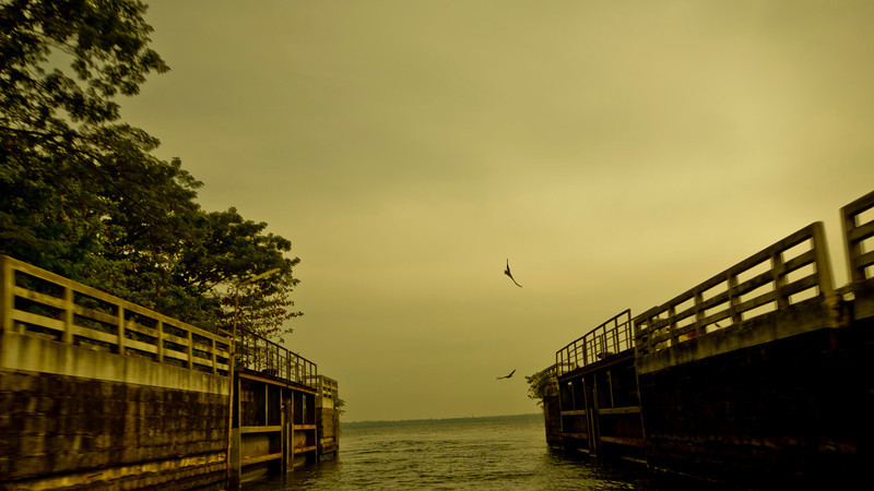 Freedom! <br /> <br /> Kerala - Vembanad Lake (2011)