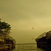Freedom! <br /> <br /> Kerala - Vembanad Lake (2011)