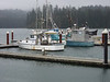 Oregon's Fishery: For Sale?