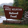 White Mountain National Forest in New Hampshire - Campton, NH