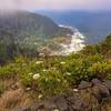 Cape Perpetual