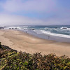 Oregon Coast No.8