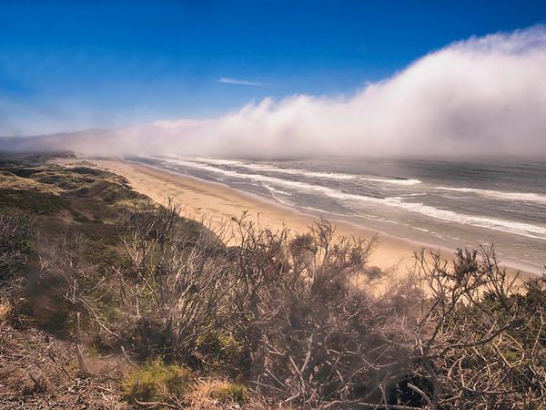 Oregon Coast No.7