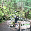Soleduck (or Sol Duc) Trail<br /> Olympic National Park - Washington