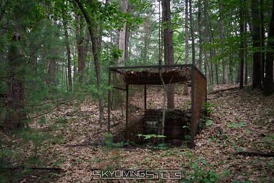 Shade Swamp Sanctuary 6/25/17