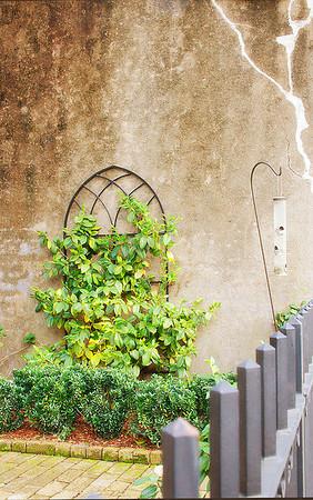 Garden Wall - CH2