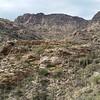 Sabino Canyon - Tucson, AZ