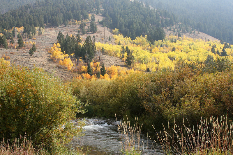 Russ Garaman Trail - Jackson, WY<br /> This is the trail used for the early miles of the Jackson Hole Marathon