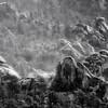 """Wilderness of Rocks""<br /> Santa Catalina Mountains<br /> Arizona"