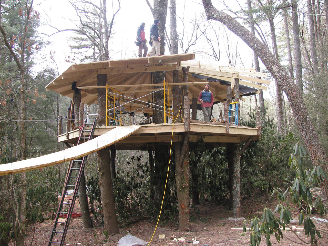 Treehouse construction
