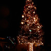 40' redwood Christmas tree in the neighborhood
