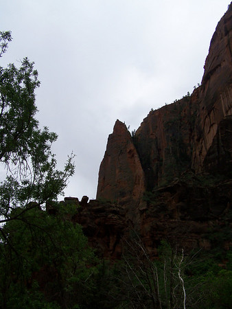 Trip to Zion 2009