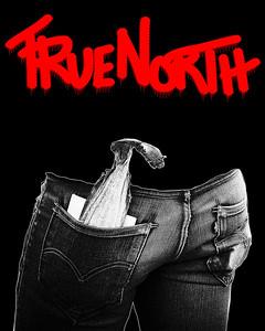 """""""TrueNorth I"""""""