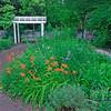 Stoney Flower Garden
