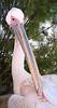 Pelikanen på Mykonos