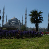 The Blue Mosque and gardens, Istanbul, Turkey.
