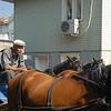 Horse drawn taxi and driver - local transport, Buyukada, Princes Islands, Turkey.