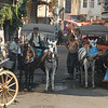 Horses as local transport, Buyukada, Princes Islands, Turkey.