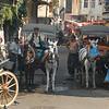 Horses as local transport, Buyukada, Princes Islands, Turkey.