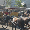 Local horse transport, Princes Islands, Turkey.