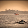 The Bosphorus Strait and the Topkapi Palace, Istanbul, Turkey.