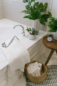 616_Prosser_Street_Master_Bath_Tuscan_Blue_0021