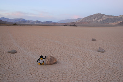 Finally, we discovered how stones at Racetrack in Death Valley are moving. Some rumors were talking about wind .. etc. Not true at all.