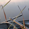 twin lakes fall mist boat