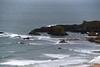 Elephant Rock The Little Isles of the Camplie - Basalt 25-02-2017 11-43-59